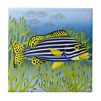 Pacific Reef Oriental Sweetlips Fish Tile