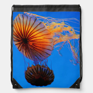 Pacific Sea Nettle (Chrysaora Fuscescens) Drawstring Bag