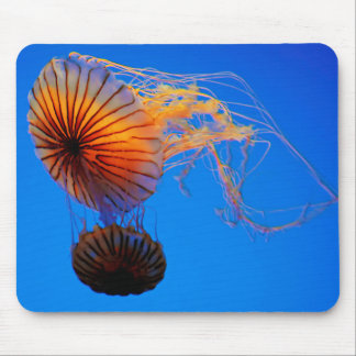 Pacific Sea Nettle (Chrysaora Fuscescens) Mouse Mat