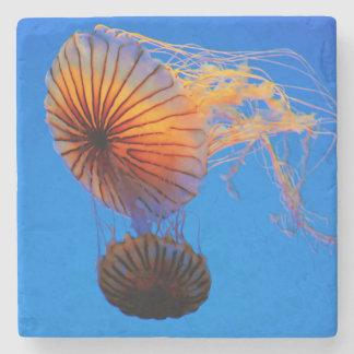 Pacific Sea Nettle (Chrysaora Fuscescens) Stone Beverage Coaster