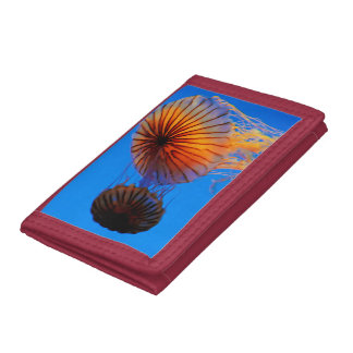Pacific Sea Nettle (Chrysaora Fuscescens) Trifold Wallet