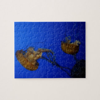 Pacific Sea Nettle Jellyfish Jigsaw Puzzle