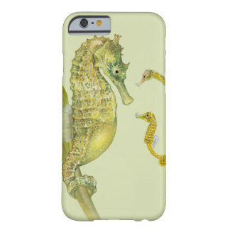 Pacific Seahorse Family Barely There iPhone 6 Case