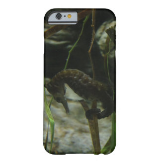 Pacific Seahorse Phone Case