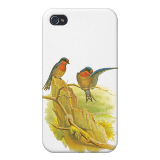 Pacific Swallow iPhone 4/4S Case