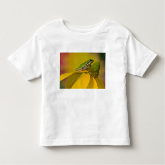 Pacific tree frog on flowers in our garden, 2 toddler T-Shirt