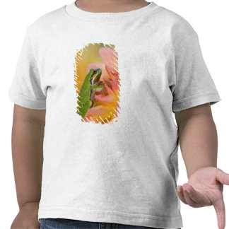 Pacific tree frog on flowers in our garden, 2 tee shirt