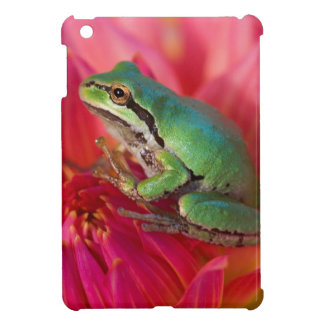 Pacific tree frog on flowers in our garden, 4 iPad mini cover