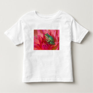 Pacific tree frog on flowers in our garden, 4 toddler T-Shirt