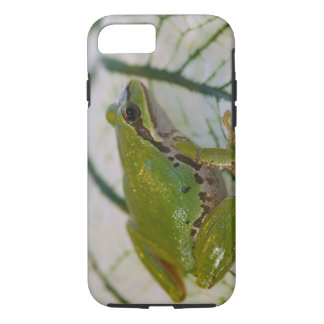 Pacific tree frog on flowers in our garden, iPhone 7 case