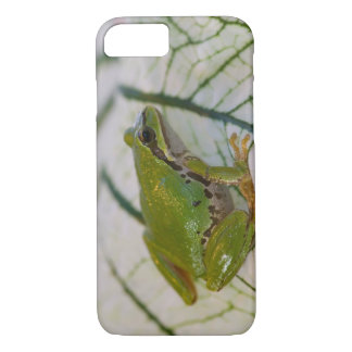 Pacific tree frog on flowers in our garden, iPhone 8/7 case