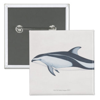 Pacific White-Sided Dolphin 15 Cm Square Badge