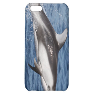 Pacific White-Sided Dolphin iPhone 4 Case