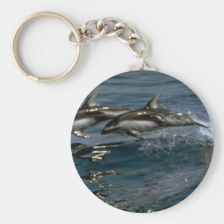 Pacific white-sided dolphin key ring