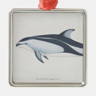 Pacific White-Sided Dolphin Silver-Colored Square Decoration