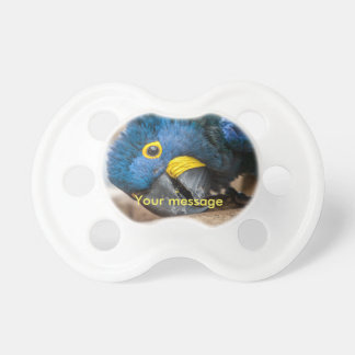Pacifier Dummy of blue Hyacinth Macaw parrot