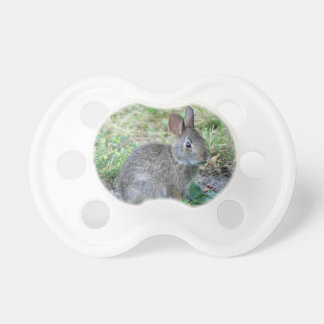 pacifier with photo of cute bunny