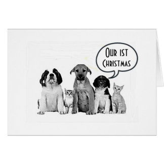 """PACK OF DOGS """"MERRY 1st CHRISTMAS to US"""" Greeting Card"""