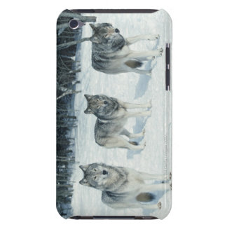Pack of wolves at edge of snowy forest barely there iPod case