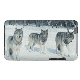 Pack of wolves at edge of snowy forest barely there iPod covers