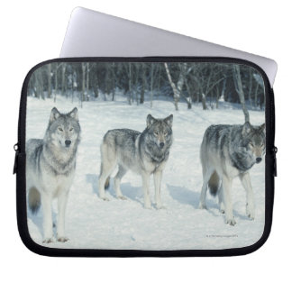Pack of wolves at edge of snowy forest laptop sleeve