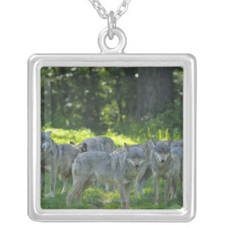 Pack of Wolves, Germany Square Pendant Necklace