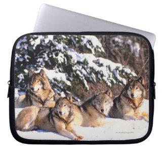 Pack of wolves in winter laptop sleeves
