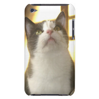 Paco Kitty Looks up iPod Case Barely There iPod Cases