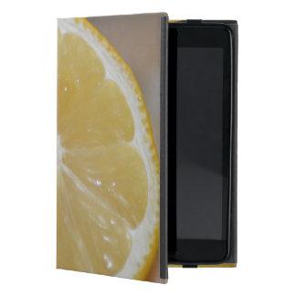 Pad mini case cover for iPad mini