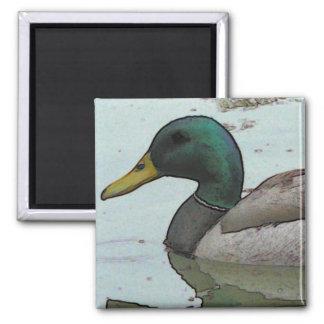 Paddling Duck Magnet