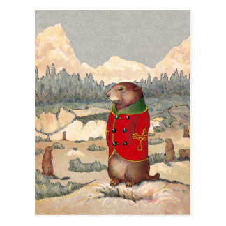 Paddy Paws in Prairie Dog Town Postcard
