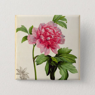Paeonia Moutan, c.1799 15 Cm Square Badge