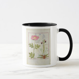 Paeonia or Peony, and Orchis myanthos Mug