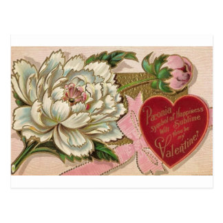 Paeonia Symbol of Happiness Postcard