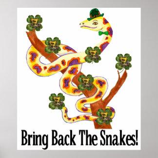 Pagan Snakes Posters