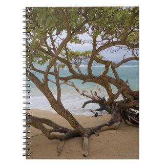 Paia Bay Beach, Maui, Hawaii, USA Spiral Notebook