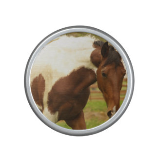 paint-horse-30 bluetooth speaker