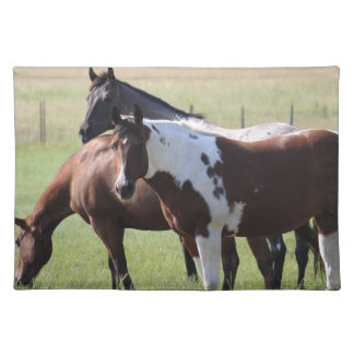 Paint Horse and Friends Placemat