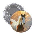 Paint Horse Gold Buttons