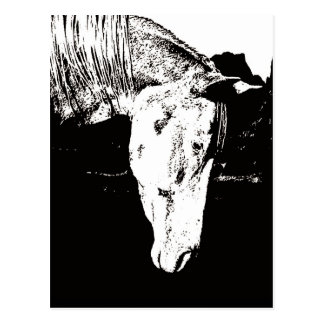 Paint Horse in the Badlands II Postcard