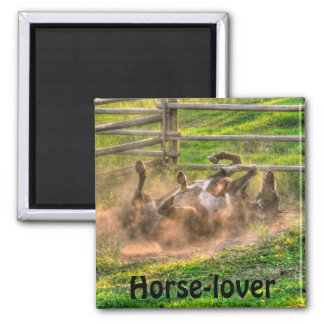 Paint Horse Rolling in Dust Funny Equine Photo Refrigerator Magnet