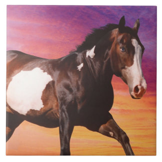 Paint Horse Sunrise Tile