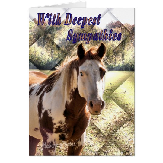 Paint Horse Sympathy2 card- personalise inside Card