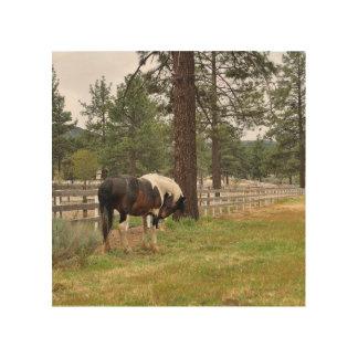 Paint Horse Wood Art