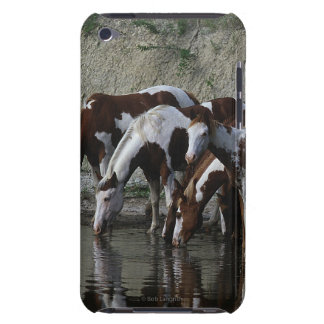 Paint Horses Drinking Barely There iPod Case