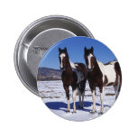 Paint Horses Standing in the Snow Button