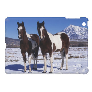 Paint Horses Standing in the Snow iPad Mini Case