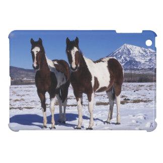 Paint Horses Standing in the Snow iPad Mini Case