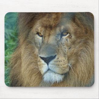 Paint Lion (lion) Mouse Pad