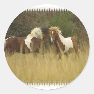 Paint Ponies in Field Sticker